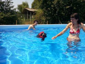 New in piscina