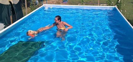 Milo in piscina2