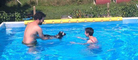 Forwardingdogs BILBO in piscina