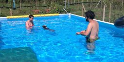 Forwardingdogs BILBO in piscina3