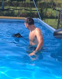 Forwardingdogs HOMER in piscina