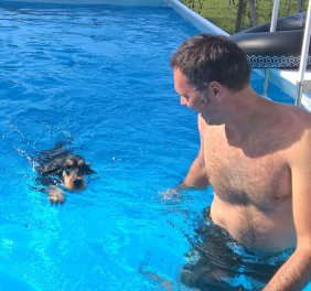 Forwardingdogs HOMER in piscina2