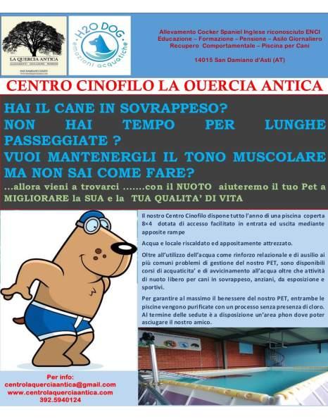 TUTTO L'ANNO